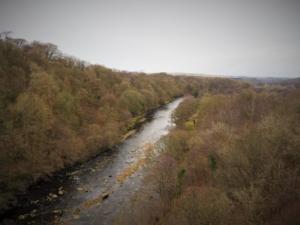 The River South Tyne from Lambley Viaduct