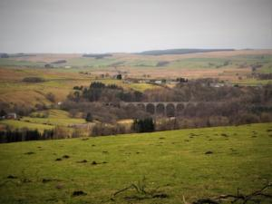 Lambley Viaduct from Lingy Close