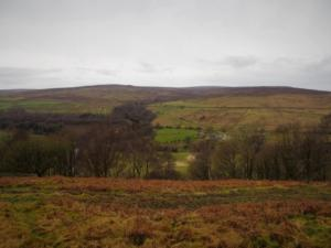 Looking across the valley towards Glendue Fell and Hartleyburn Common
