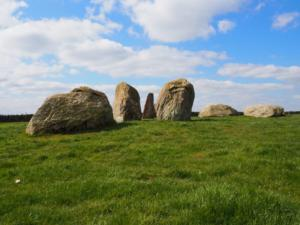 The stones nearest Long Meg with Long Meg in the background