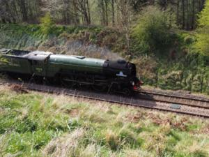 A glimpse of the Tornado as it flies past of the Settle - Carlisle railway