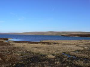 Viewing Hill and Cow Green Reservoir