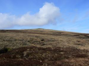 Looking up at Meldon Hill