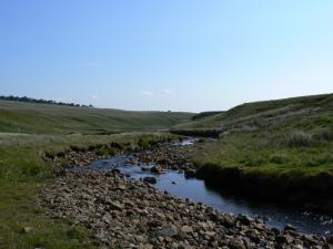Aglionby Beck