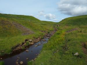 A more open section of Middlehope Burn