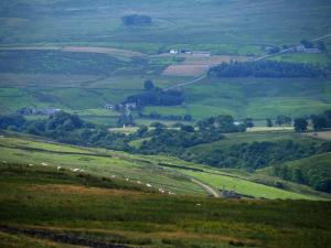 A closer view of a section of Weardale