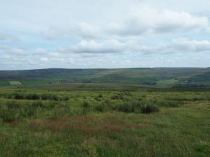 Our pathless route across Smailsburn Common