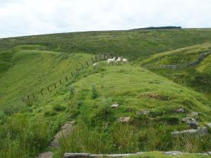 Following the  Weardale Way