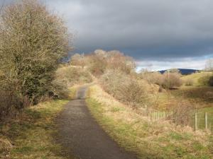 A view back along the path