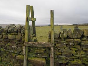 I was not impressed at the barbed wire on this stile