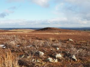The top of Millstone Grits looking towards the trig point