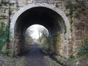 Back on the Tees Railway Walk path on my way back to Mickleton