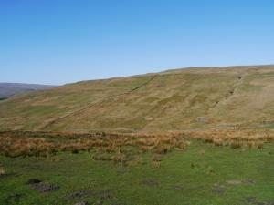 The grassy slopes of Ayle Common