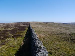 Looking along the wall from Kip Law to Tarn Rigg