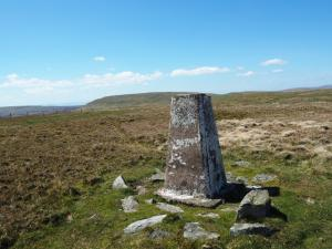 The Mickle Fell Trig