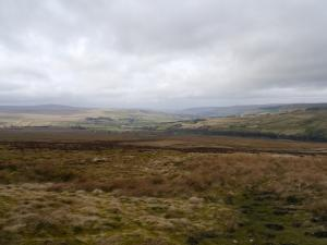 A view of South Tynedale