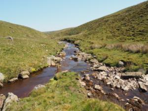 Black Beck and Balder Beck join to form the River Balder