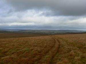 On Lartington High Moor