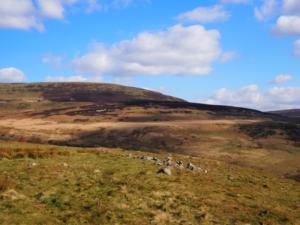 Tarnmonath Fell