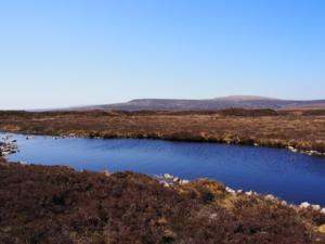 A small tarn just off the track on Staple Moss