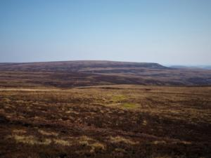 Looking across to Bink Moss