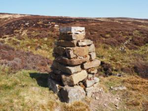 One of the raised grouse feeding stations we passed