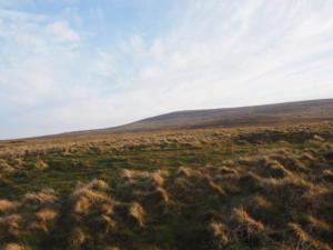 The upper reaches of Thack Moor