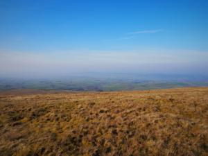 A hazy Eden valley
