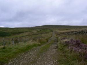 The path climbing Thack Moor