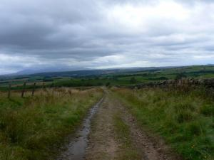 On the bridleway