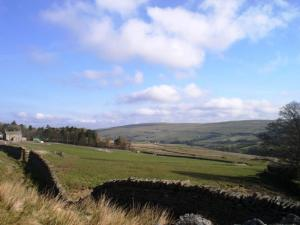 West Allendale and Brownley Hill