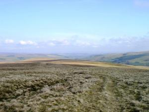 Middle Rigg and West Allendale
