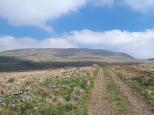 Hayber Lane with Long Fell in the distance