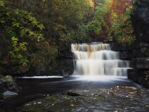 The fine waterfall just upstream from the Bowlees Visitor Centre