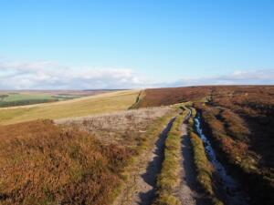 Following the track over Wolsingham North Moor